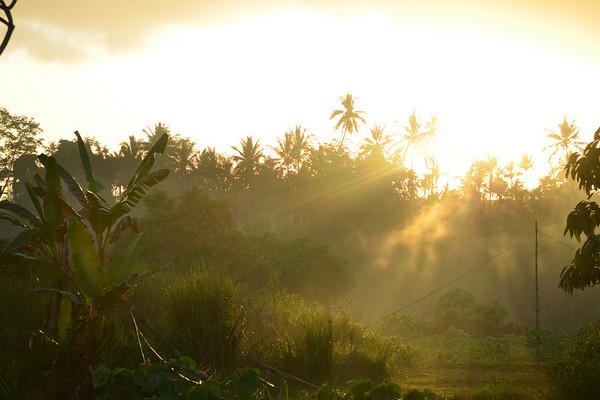 Ubud Bali | © eGuide Travel/Flickr