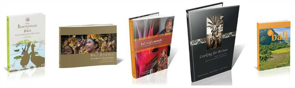 clare mcalaney bali travel books