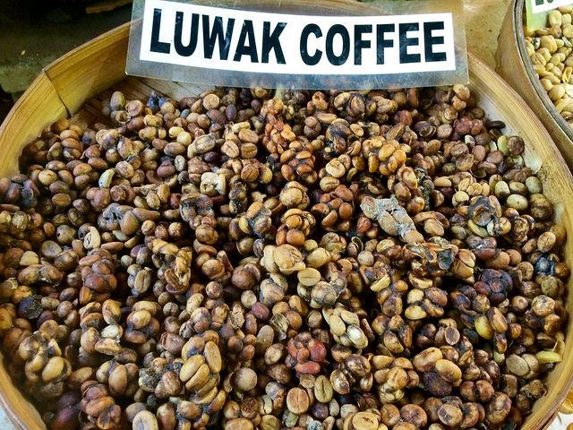 Luwak Coffee | © Sarah_Ackerman/Flickr